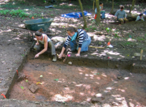 ARCHAEOLOGICAL INVESTIGATIONS IN VIRGINIA