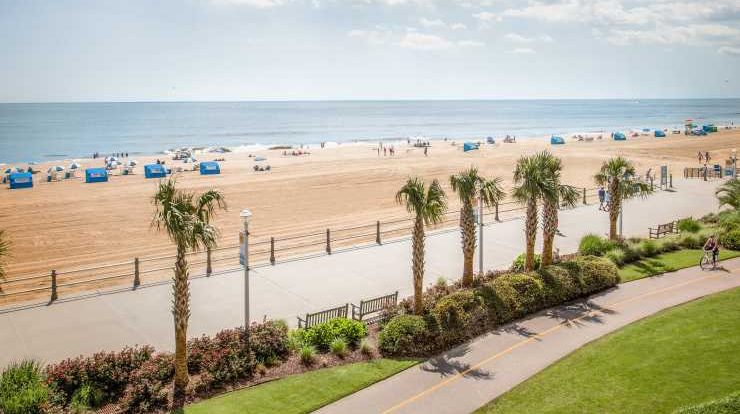 Image Showing Virginia's Long Oceanfront Boardwalk lined with palm trees